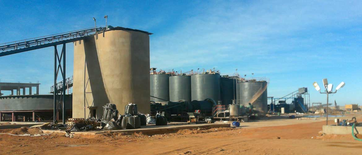 Gold-CIL-plant-in-Sudan